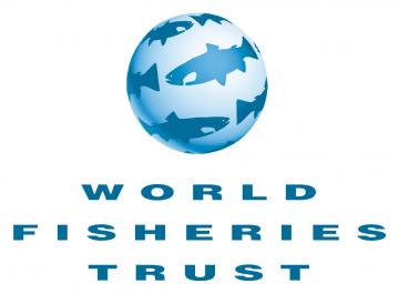 WFTlogo transparent